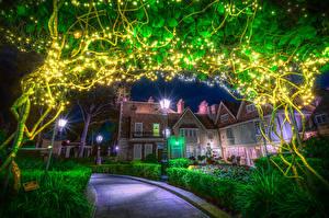 Картинка США Диснейленд Парк Дома Калифорния Анахайм Ночные Уличные фонари Гирлянда Кусты HDRI
