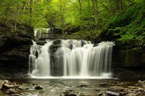 Картинка США Леса Водопады Камень Речка Деревья Mohawk Falls, Colebrook, New Hampshire Природа