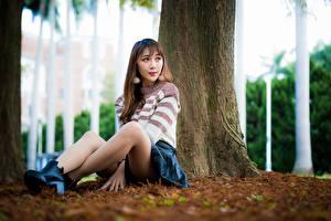 Фотография Азиатка Боке Шатенки Сидящие Свитер Юбка Ног