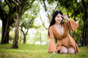 Картинки Азиатка Брюнетки Траве Сидя Платья Вырез на платье Улыбается Смотрит Боке Девушки