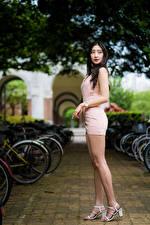 Картинки Азиатки Брюнетки Позирует Ноги Платья Размытый фон молодая женщина