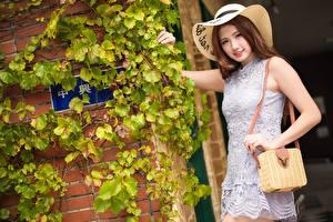 Фото Азиатка Сумка Размытый фон Шляпа Улыбается Платье Рука Шатенка молодые женщины