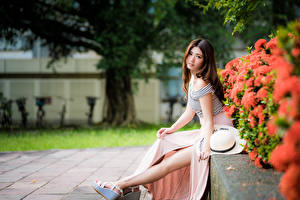 Картинка Азиаты Сидящие Ноги Шляпе Взгляд Шатенка Девушки