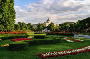 Картинка Австрия Вена Парк Газон Кусты Дизайн BlumenPark Природа