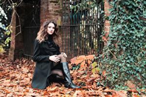 Картинка Осень Шатенка Пальто Листья Ног Сапоги молодые женщины
