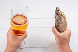 Фотография Пиво Рыба Рука Бокал Пища