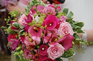 Фотографии Букет Роза Каллы Эустома Цветы