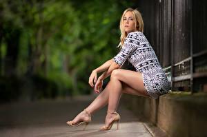 Картинки Блондинок Сидит Платья Ноги Смотрят Размытый фон Camille Девушки
