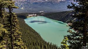 Обои для рабочего стола Канада Парк Озеро Леса Банф Сверху Отеля lake Louise, The Fairmont Chateau Природа