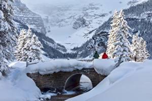 Картинка Канада Парк Зима Мосты Горы Банф Снегу Деревьев Alberta, Lake Louise Природа