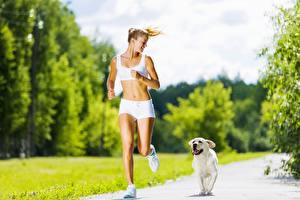 Обои Собаки Золотистый ретривер Тропы Размытый фон Бежит Блондинки Шорты спортивный