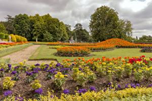 Обои Англия Парк Бархатцы Георгины Дизайна Газоне Waddesdon Manor gardens