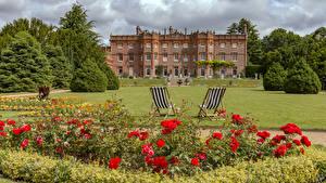Картинки Англия Мак Парки Дома Розы Дизайн Кресло Кусты Газоне Hughenden Manor Park Цветы