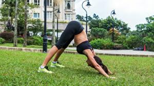 Фотографии Фитнес Трава Поза Ноги Растягивается молодая женщина