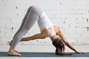 Фотографии Фитнес Йогой Тренируется Поза Руки Ноги молодые женщины
