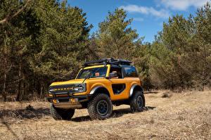 Картинки Форд Внедорожник Желтая Дерево Bronco 2, Door Preproduction, 2020 авто
