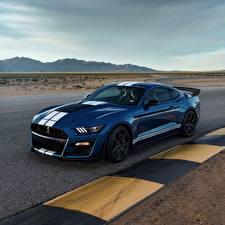 Фотография Форд Синяя Mustang Shelby GT500 2019