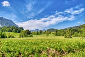 Обои для рабочего стола Германия Луга Лес Небо Бавария Траве Aschau im Chiemgau, Rosenheim Природа