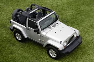Картинки Jeep SUV Сверху Серебристая Трава Wrangler Sahara, Worldwide, JK, 2007–10 авто