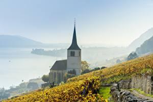 Обои для рабочего стола Озеро Виноградник Церковь Швейцария Тумане Lake Biel Природа