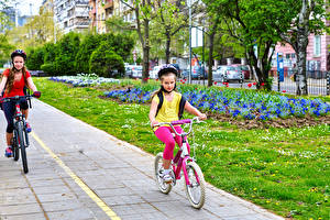 Картинки Девочки Двое Велосипеды Движение Шлем
