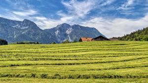Фото Гора Поля Германия Бавария Chiemgau, Inzell Природа