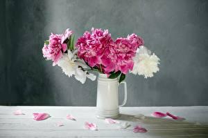Фотографии Пион Вазы Белый Розовые Лепестки