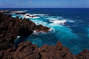 Обои Португалия Побережье Океан Скала Madeira Природа картинки