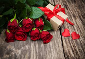 Картинка Роза Красные Подарки цветок