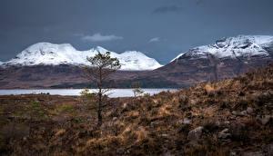 Картинка Шотландия Горы Камни Деревьев Скале Torridon hills Природа