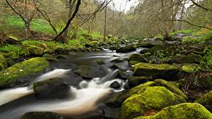 Обои Камни Англия Мох Ручей Yorkshire Природа картинки