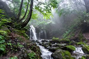 Картинка Камни Водопады Туман Мох Ручеек