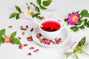 Картинки Чай Роза Чашка Ветвь Лепестки Продукты питания