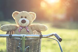 Фотографии Плюшевый мишка Велосипедный руль Корзины