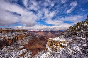 Картинка США Гранд-Каньон парк Горы Небо Скала Дерево Снеге Облако Arizona Природа
