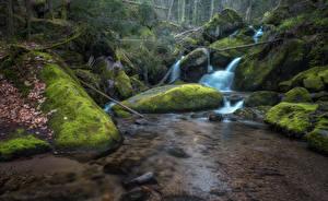 Фото Водопады Камни Мох Ручей Природа