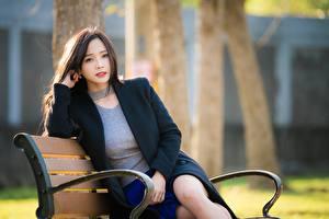 Фото Азиатка Размытый фон Скамейка Сидит Шатенка Смотрит молодые женщины