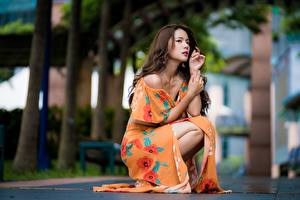 Картинки Азиатки Размытый фон Шатенка Руки Платья Сидящие девушка