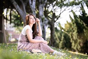 Фотография Азиатки Боке Шатенка Руки Сидящие Траве молодые женщины