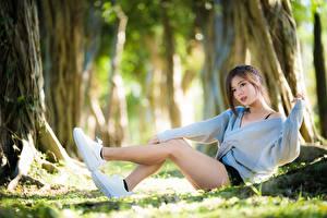 Фотография Азиатка Размытый фон Шатенка Ног Свитера Сидит молодые женщины