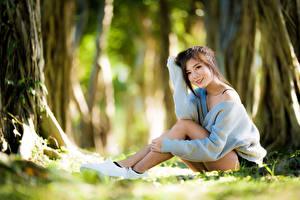 Фото Азиатки Размытый фон Шатенки Улыбка Сидящие Свитер Рука молодые женщины