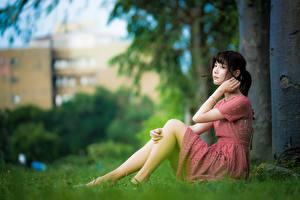 Фото Азиаты Размытый фон Брюнетка Платье Рука Ноги Сидит молодая женщина