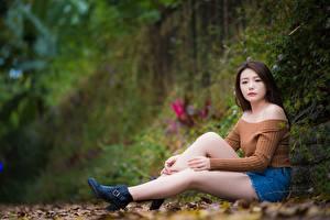 Картинки Азиаты Шатенки Размытый фон Сидя Рука Ног молодые женщины