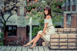 Фотография Азиатки Шатенка Сидящие Платья Ног Туфлях Девушки