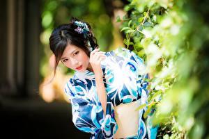 Фотография Азиаты Брюнетки Смотрят Боке Кусты молодая женщина