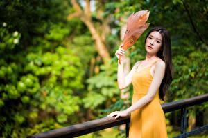 Картинка Азиатки Листья Платье Рука Взгляд Боке молодая женщина