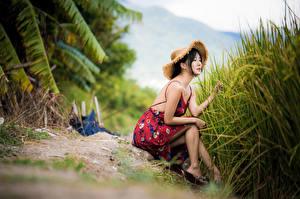 Фотографии Азиаты Сидя Платье Шляпе Размытый фон девушка