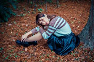 Картинка Азиатки Сидящие Юбки Свитере Смотрит девушка