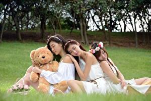Фотографии Азиатки Плюшевый мишка Траве Боке Сидя Корзинка Венком Трое 3 Красивая девушка