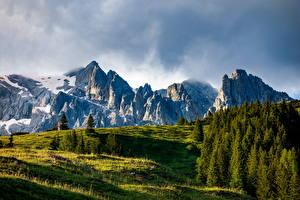 Обои Австрия Гора Альп Деревья Dienten am Hochkönig Природа